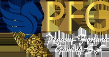 PegasusFG Website Development